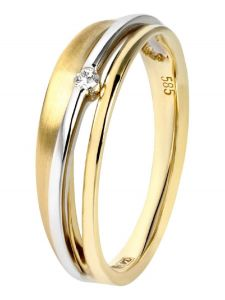 Treasure Collection TC-39023 14 karaat bi-color gouden ring met 0,03 ct diamant