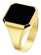 Treasure Collection TC-881587 14 karaat gouden zegelring met onyx 17 mm