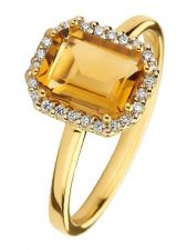 Treasure Collection TC-50752 14 karaat gouden ring met edelsteen en 0,10 ct diamant