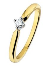 Treasure Collection TC-50507 14 karaat gouden ring met 0,10 ct diamant